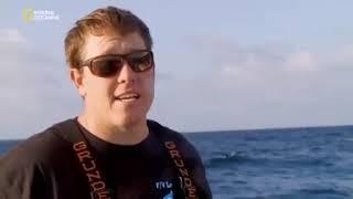 Рыбалка на тунца север против юга