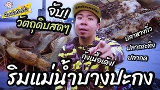 ตกกุ้ง ตกปลา ริมแม่น้ำบางประกง [หัวครัวทัวร์ริ่ง] EP.20