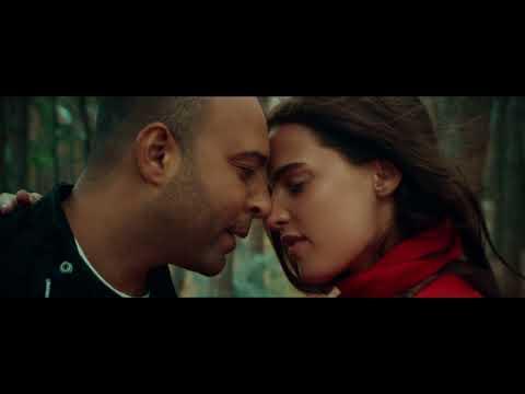 Arash feat Helena - Dooset Daram (Filatov & Karas Remix)