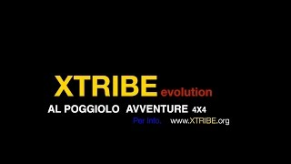 Promo XTRIBE evolution 2016 - By Gogoteam