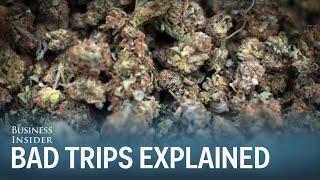 Dr. Sanjay Gupta: Here's Why People Get Bad Marijuana Trips