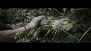 The Avox | Hunger Games