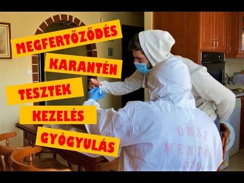 Baktériumvírusok gombák és paraziták képek