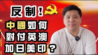 (開啟字幕)反制!中國如何對付英澳加日美印?加拿大取消引渡,俄國慶海參崴割讓160年(統治東方),噤口不語就是出賣領土!20200704