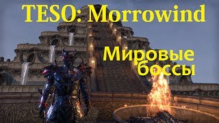 The Elder Scrolls Online #127 - Morrowind: Мировые Боссы