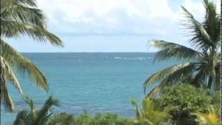 preview picture of video 'Villas del Mar Beach Resort Extended TV Ad for US Markets'