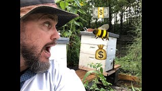 How much does it cost to start BEEKEEPING?