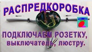 Соединение проводов в распределительной коробке. Подключение розетки, выключателя и люстры.