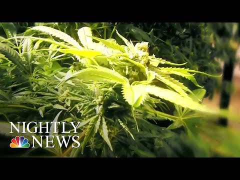 Study: Medical Marijuana Helps Children Who Have Seizures | NBC Nightly News