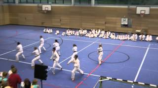 preview picture of video 'Taekwon-Do Sportgala 2012'