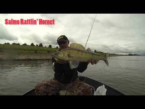 Vobler Salmo Hornet Rattlin 3.5cm 3.1g Yellow Holo Perch F