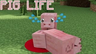 Pig Life   Minecraft Animation | Poor Piggys :