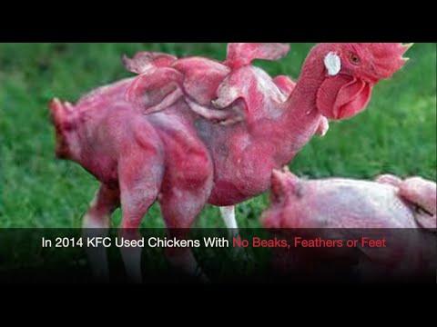 Does KFC Still Serve Mutant Chickens?