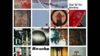 "Video thumbnail of ""Bonobo - Nothing Owed"""