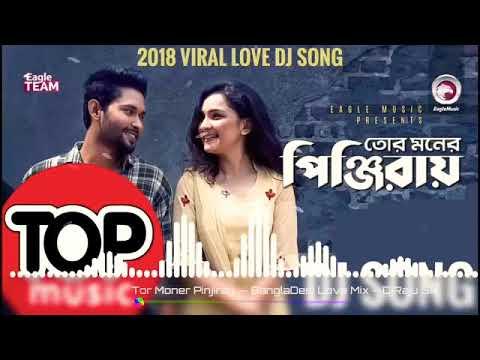 Tor Moner Pinjiray Tui Kare Dili Thai | Bangla New Dj Song