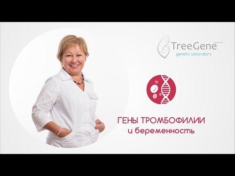 Гены тромбофилии