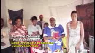 Steward chiwasa (Bbweelani)