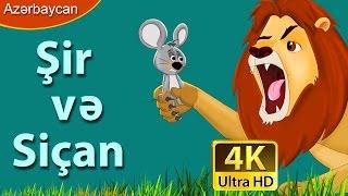 şir vÉ™ siçan  azerbaycan çizgi filmleri  uşaqlar üçün ingilis altyazılı hekayÉ™lÉ™r  4k ultra hd