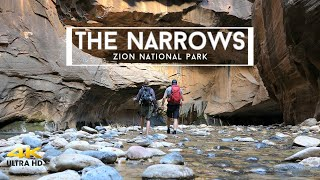 The Narrows | Zion National Park | A Beginner's Guide