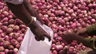 Ethiopia: IFAD invests in building resilience