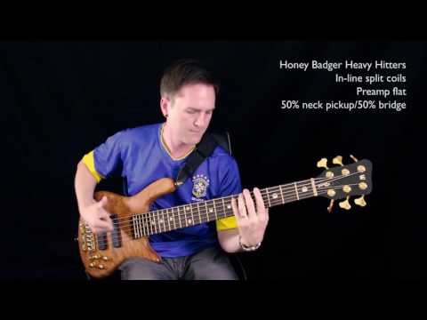 Comparison: Honey Badger Heavy Hitters & Delano SBC 6 HE/S bass guitar pickups