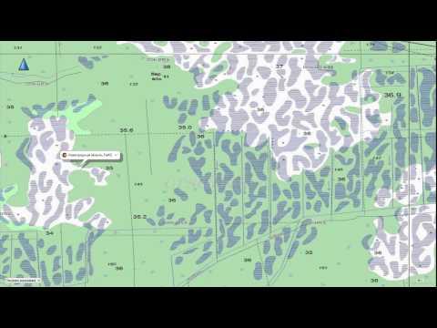 Топографическая карта Новгородской области для Garmin
