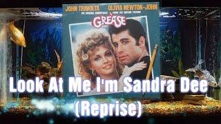 Look At Me I'm Sandra Dee (Reprise) - Olivia Newton-John