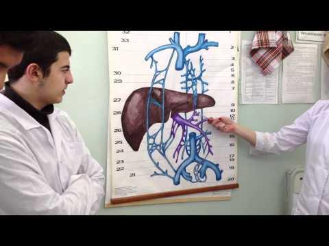 Повышенное давление лечение гипертонии