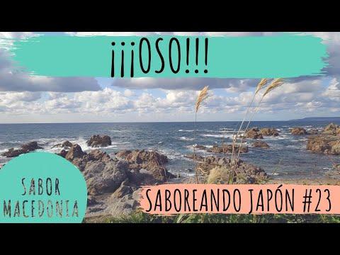 Cap.23: ¡¡¡OSO!!!   Saboreando Japón