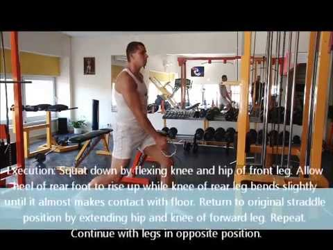Cable One Arm Split Squat with Body Tester