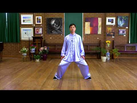 Tai Chi for Beginners (Lesson 1: Basic Training)
