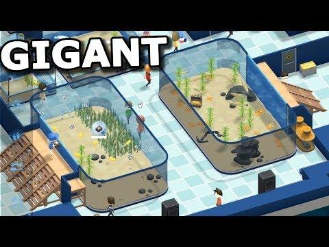 Dvě obří akvária!  - Megaquarium #3