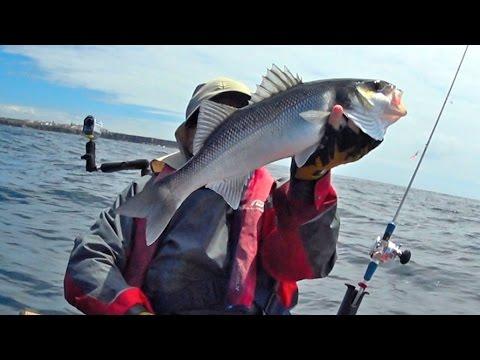 Una serie di reti per pesca