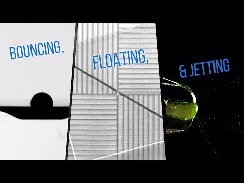 Oil jets from citrus fruits, balls that bounce on water, and self-propelled levitating plates - step inside some of the latest fluid dynamics research! This video is part of a collaboration between FYFD and the Journal of Fluid Mechanics featuring a series of interviews with researchers from the APS DFD 2017 conference.