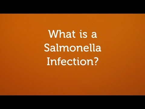 , title : 'What is a Salmonella Infection? (Contaminated Food or Water)