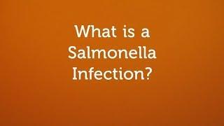 Антитела к vi-антигену salmonella typhi