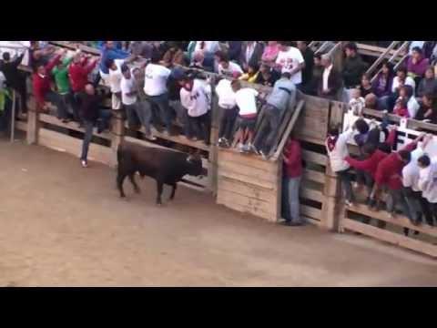 CARDONA - ENCIERROS 2012 (SÁBADO Y LUNES)