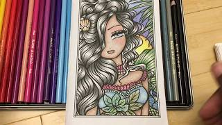 Blick Studio Colored Pencil Review And Comparison To Prismacolor Koh I Noor