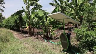 Solar Powered Water Pump - There's a Better Way