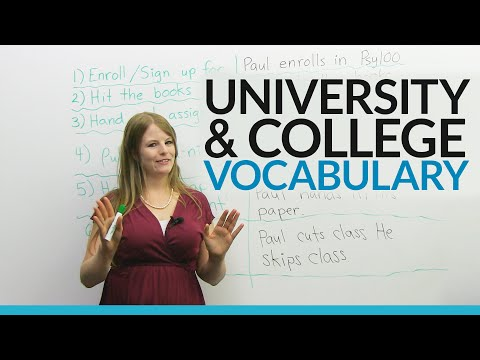 University English: Expressions and Vocabulary