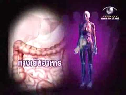 Dexamethasone และความอ่อนแอ