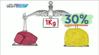 [과학상식] 세상의 모든 법칙 - 근육량은 어떻게 알 수 있을까?_#002