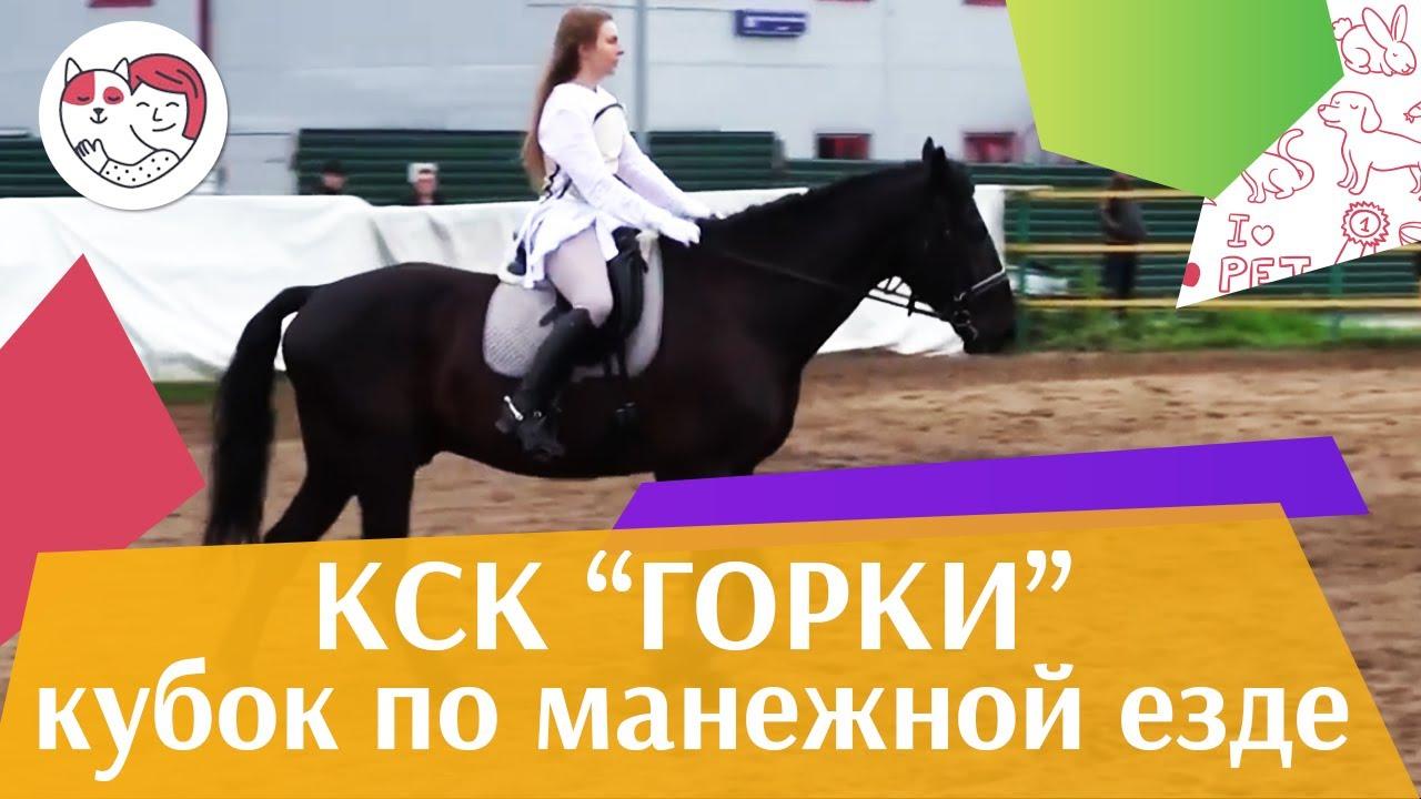 Летний  кубок  КСК Горки по  манежной езде КЮР часть 23 на ilikepet