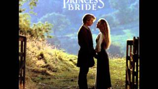 The Princess Bride 06 - The Cliffs of Insanity