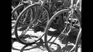 Ladri di biciclette Bicycle Thieves Movie