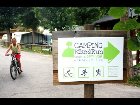 Mountain bike from Nou Camping