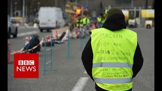 Yellow Vests: Is the symbol spreading across Europe? - BBC News