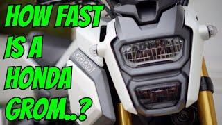 honda grom 2019 top speed - TH-Clip