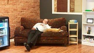 Kakek Ini Berhasil Kumpulkan Donasi Rp593 Juta karena Foto Tidurnya Bersama Kucing