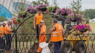 Дорогу к Дворцу водных видов спорта украсили цветами